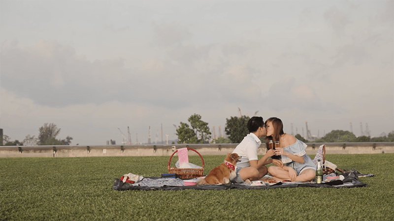 couple kissing picnic with dog